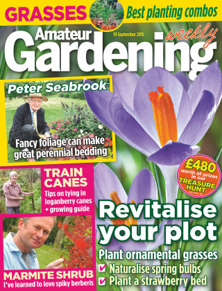 Amateur Gardening 19th September 2015