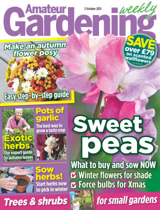 Amateur Gardening 3rd October 2015