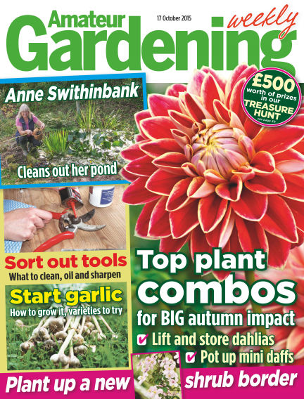 Amateur Gardening October 20, 2015 00:00
