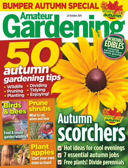 Amateur Gardening October 27, 2015 00:00