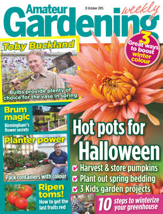 Amateur Gardening 31st October 2015