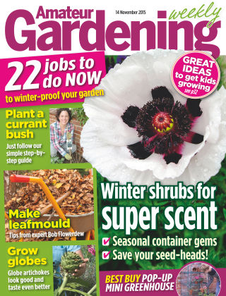 Amateur Gardening 14th November 2015