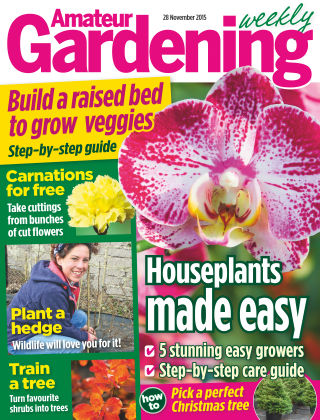 Amateur Gardening 28th November 2015