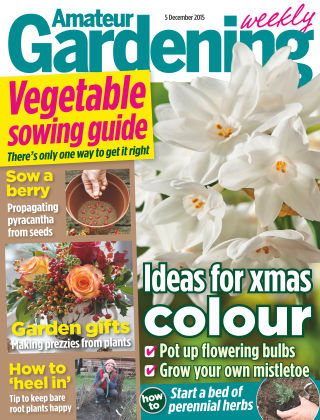 Amateur Gardening 5th December 2015