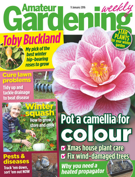 Amateur Gardening January 12, 2016 00:00