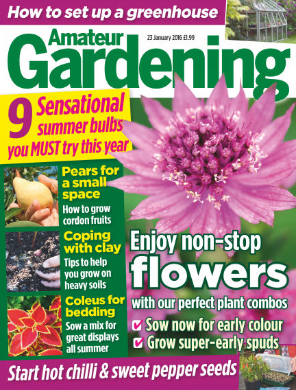 Amateur Gardening January 26, 2016 00:00