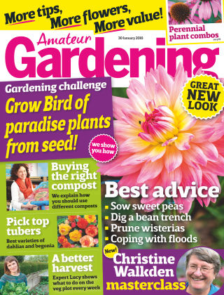 Amateur Gardening 30th January 2016