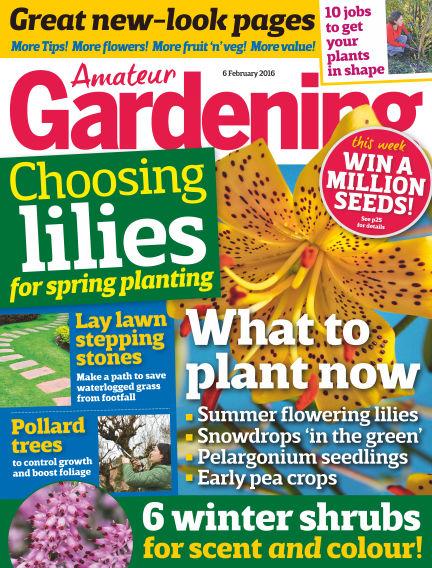 Amateur Gardening February 09, 2016 00:00
