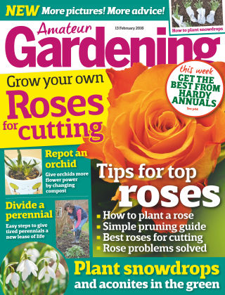 Amateur Gardening 13th February 2016