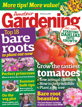 Amateur Gardening 20th February 2016