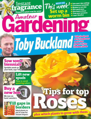 Amateur Gardening 18th June 2016