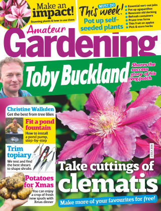 Amateur Gardening 2nd July 2016