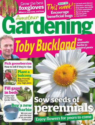 Amateur Gardening 9th July 2016