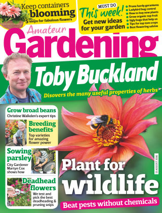 Amateur Gardening 13th August 2016