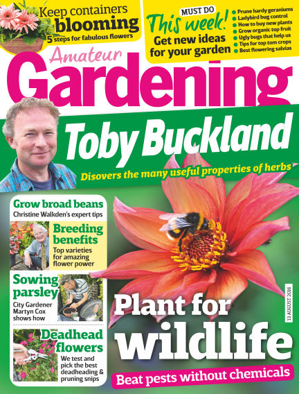 Amateur Gardening August 09, 2016 00:00