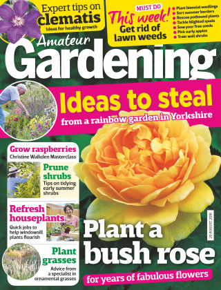 Amateur Gardening 20th August 2016