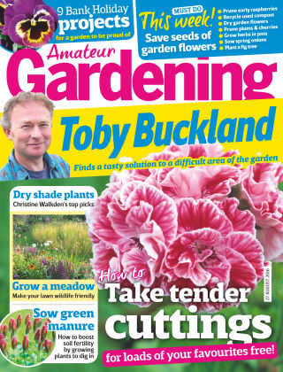 Amateur Gardening 27th August 2016