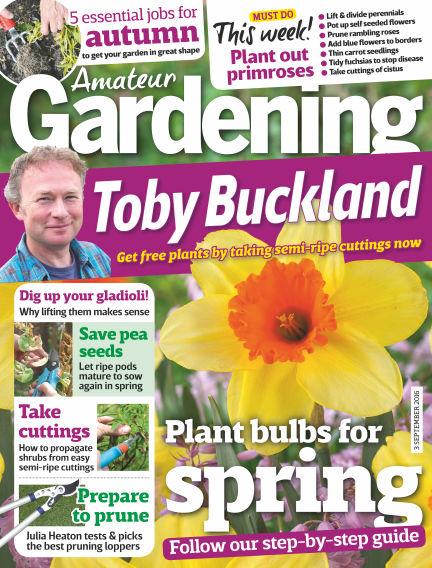 Amateur Gardening August 30, 2016 00:00
