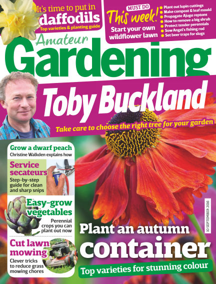 Amateur Gardening September 06, 2016 00:00