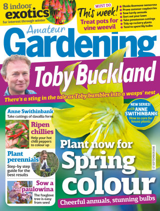 Amateur Gardening 17th September 2016