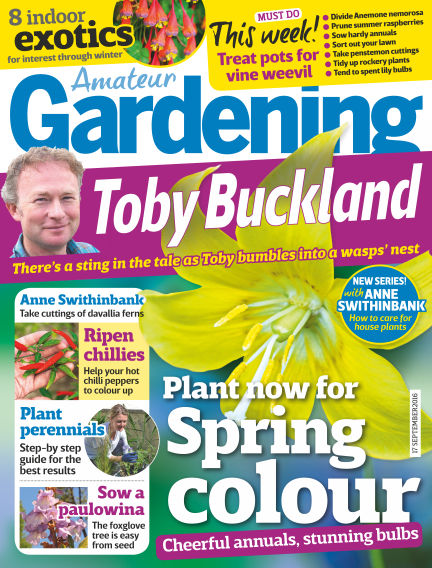 Amateur Gardening September 13, 2016 00:00