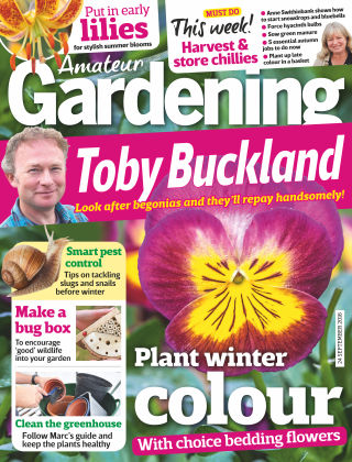Amateur Gardening 24th September 2016