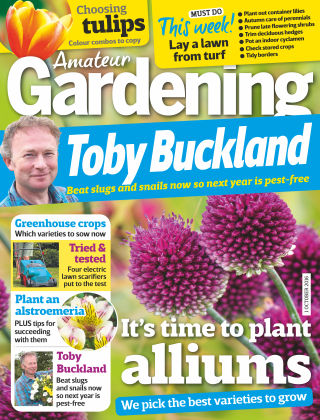 Amateur Gardening 1st October 2016