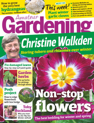 Amateur Gardening 8th October 2016