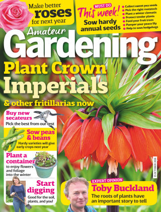 Amateur Gardening 15th October 2016