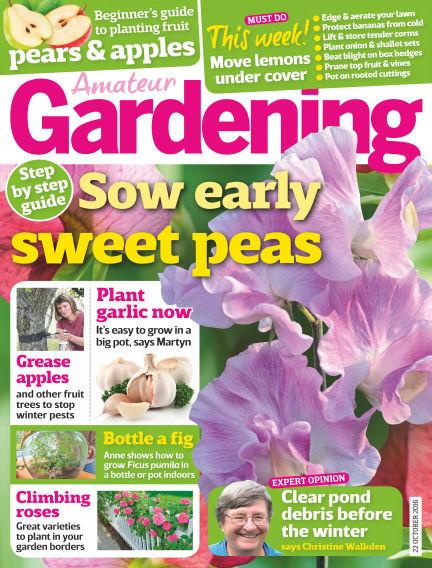 Amateur Gardening October 18, 2016 00:00