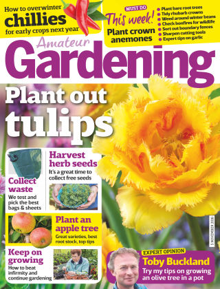 Amateur Gardening 5th November 2016