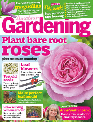 Amateur Gardening 12th November 2016
