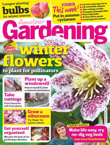 Amateur Gardening November 15, 2016 00:00