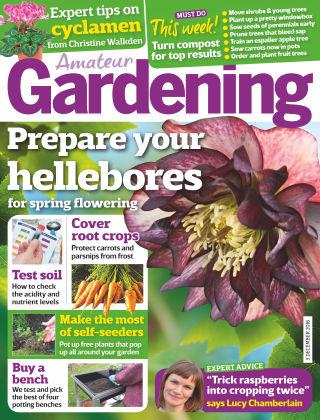 Amateur Gardening 3rd December 2016