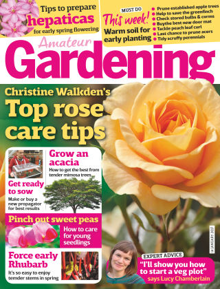 Amateur Gardening 14th January 2017
