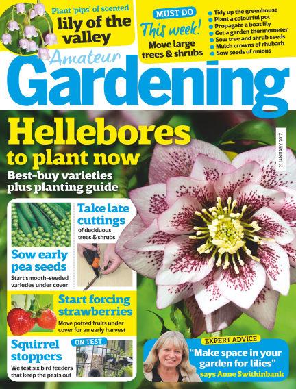 Amateur Gardening January 17, 2017 00:00