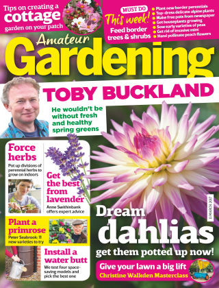 Amateur Gardening 11th March 2017