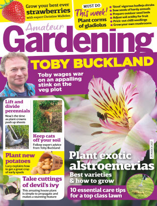 Amateur Gardening 25th March 2017