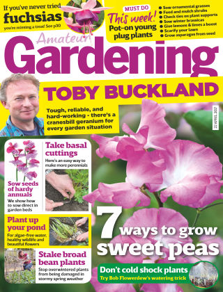 Amateur Gardening 22nd April 2017