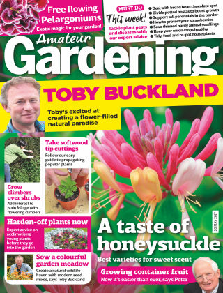 Amateur Gardening 20th May 2017