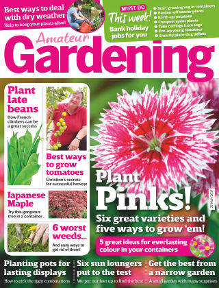 Amateur Gardening 27th May 2017