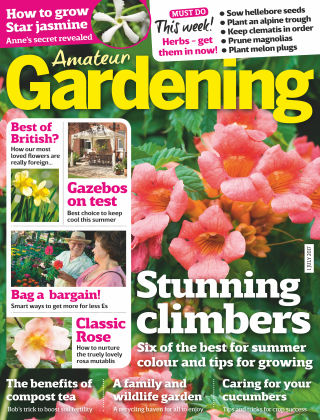 Amateur Gardening 1st July 2017