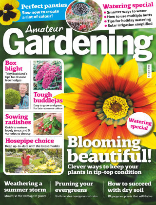 Amateur Gardening 8th July 2017