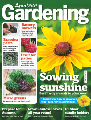 Amateur Gardening 29th August 2017