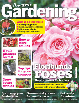 Amateur Gardening 23rd September 2017