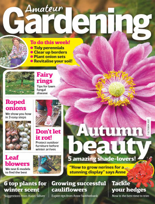Amateur Gardening 7th October 2017