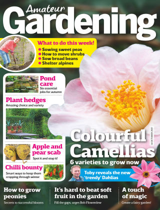 Amateur Gardening 14th October 2017