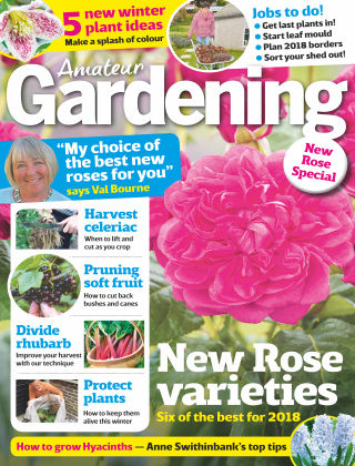 Amateur Gardening 28th October 2017
