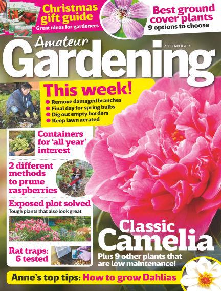 Amateur Gardening November 28, 2017 00:00