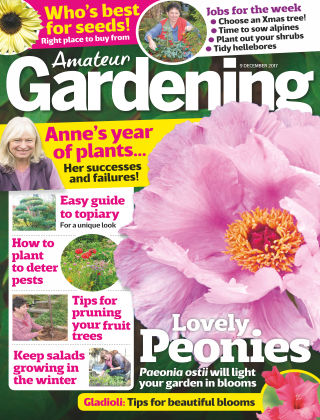 Amateur Gardening 9th December 2017